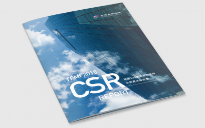 ESG Report Design for Public Company in Asia